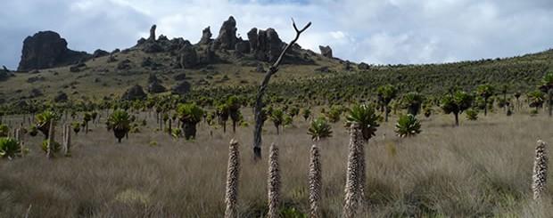 Mount Elgon, Eastern Uganda